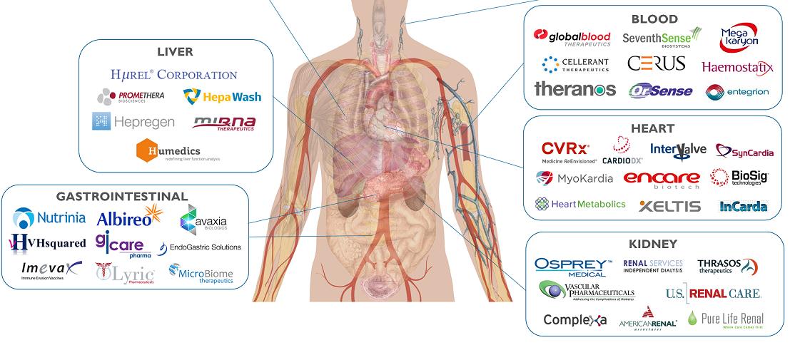 The anathomy of 69 healthcare start ups
